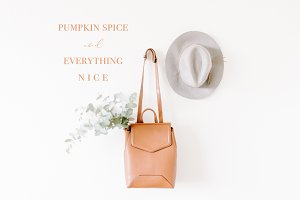 Pumpkin Spice Fall Stock Photo