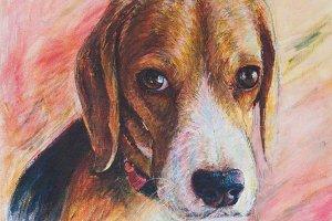 Painting of beagle portrait