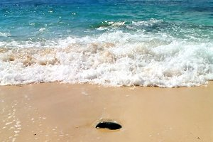 Stone in the sand and the wave behin