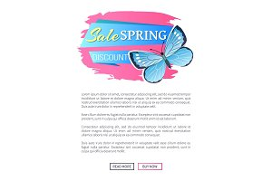 Sale Spring Discount Blue Butterfly