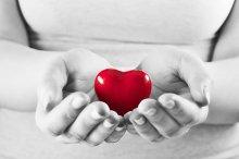 Heart in woman hands
