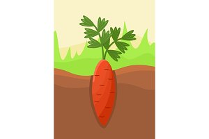 Cartoon Carrot Vegetable in Soil