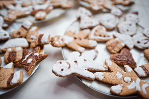 Gingerbread cookies or christmas coo