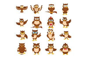 16 Cute Owl Cartoon Flat Icons