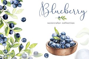 Watercolor Clipart - Blueberry