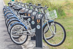 Public parking for rental bicycles,