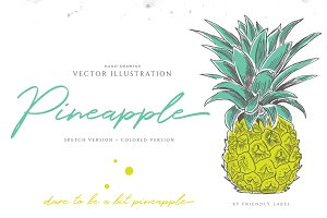 PINEAPPLE hand-sketched plus colors