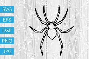 Halloween Spider SVG Cut File