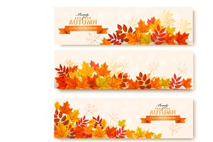 Three abstract autumn banners vector