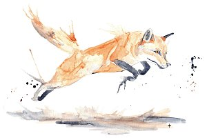 Red Fox Jumping Watercolor jpg