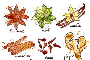 Herbs and spices decorative icons