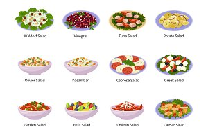 Salad vector healthy food with fresh
