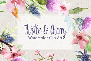 Watercolor Thistle & Cherry Clip Art