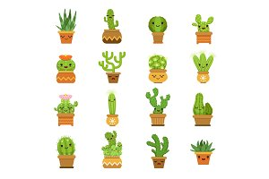 Cute desert plants. Cactus in pots