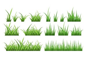 Nature illustrations of green field