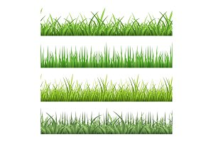 Green field grass. Horizontal vector