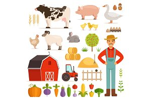Different farm elements. Vegetables