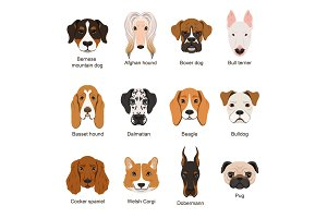 Different dogs. Vector illustrations