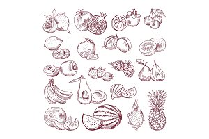 Vector sketch fruits for package