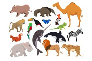 Zoo wild animals. Cute vector