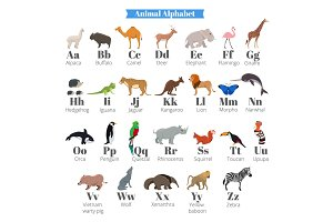 English vector alphabet for kids