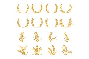 Silhouette of wheat. Corn vector
