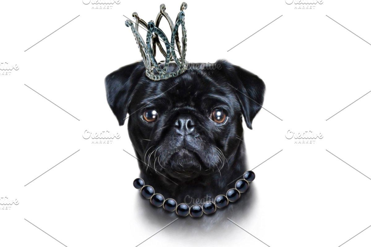 589375351308 Cute pug illustration-Dog print art ~ Illustrations ~ Creative Market