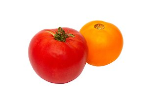 A fresh red and yellow tomatoes isol