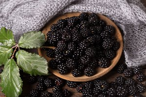 fresh bramble,blackberry