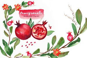 Pomegranate. Watercolor Clip art