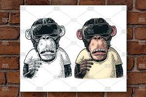 Monkey  virtual reality Engraving