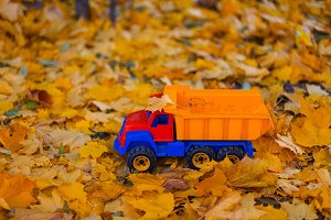 Toy car truck outdoors autumn on yel