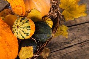 Pumpkin crop autumn yellow compositi