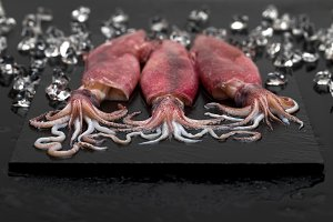 Fresh raw seafood squid with crushed