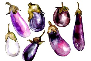 Purple eggplant vegetables PNG set