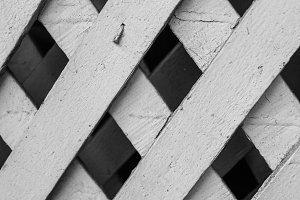 Lattice Background in Black White