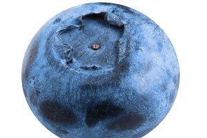 Single fresh blueberry isolated on