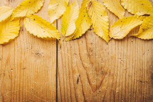 Autumn leaves background on wooden t