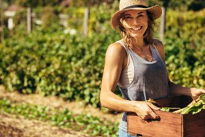 Friendly woman harvesting