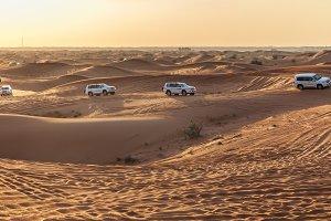 Desert safari. Nature background.