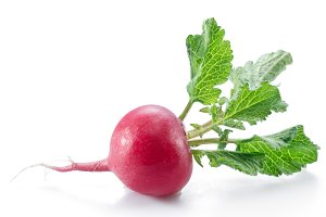 Red salad radish with leaves on the