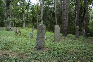Tombstones in the Old Jewish