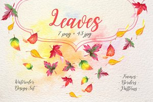 Cool autumn leaves PNG watercolor