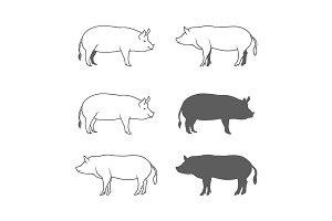 Set of Pork Illustration Isolated