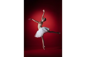Ballerina. Young graceful female