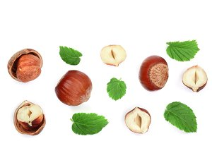 Hazelnuts with leaves with copy