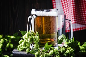 Large mugs with german light beer an