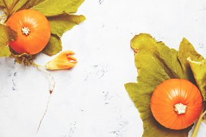 Autumn background with pumpkins and