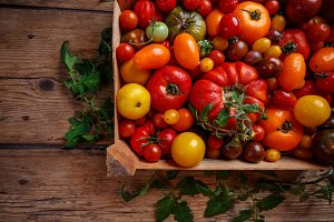 Flat lay of colorful tomatoes