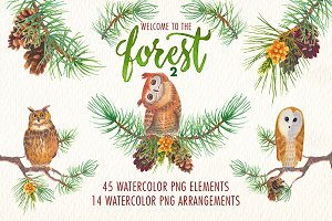 Welcome to the forest. Volume 2